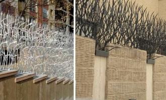 حفاظ روی دیوار در کرج| حفاظ بوته ای در کرج